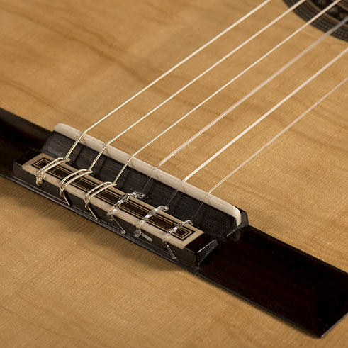 Saddle and Bridge | Daryl Perry Classical Guitars